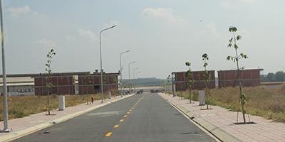 Dự án New Times City